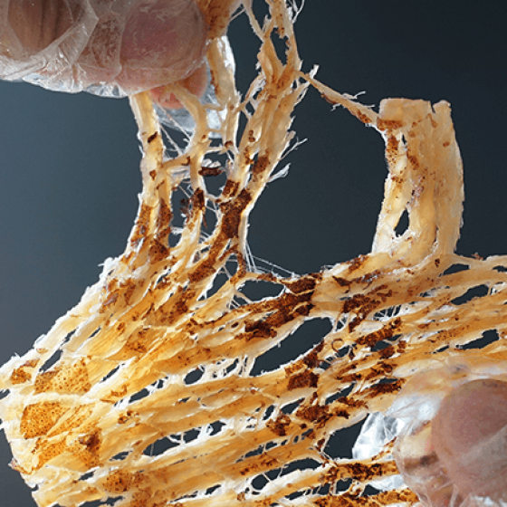 Dried Seasoned Squid